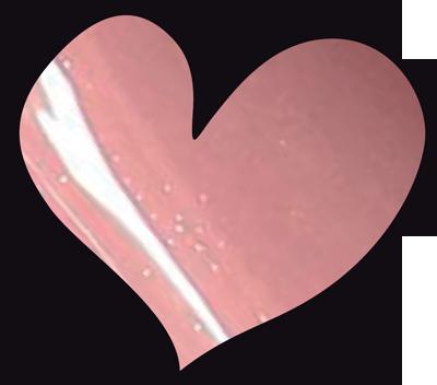 LoveNess   059 Lailah 15ml