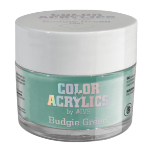 Color Acrylics by #LVS | CA51 Budgie Green 7g